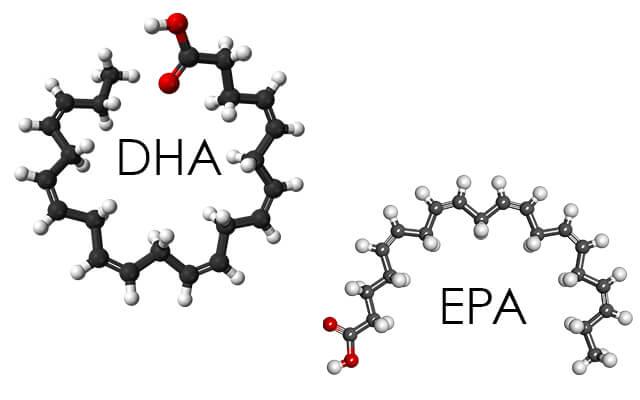ADHDに不足しがちなDHA・EPAって?