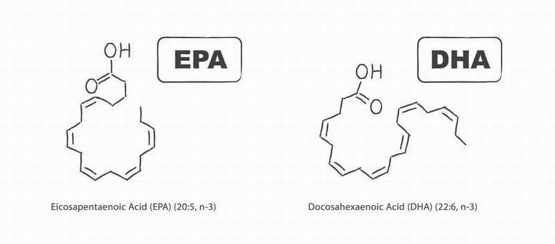 ADHDに有効なDHA・EPAとは?