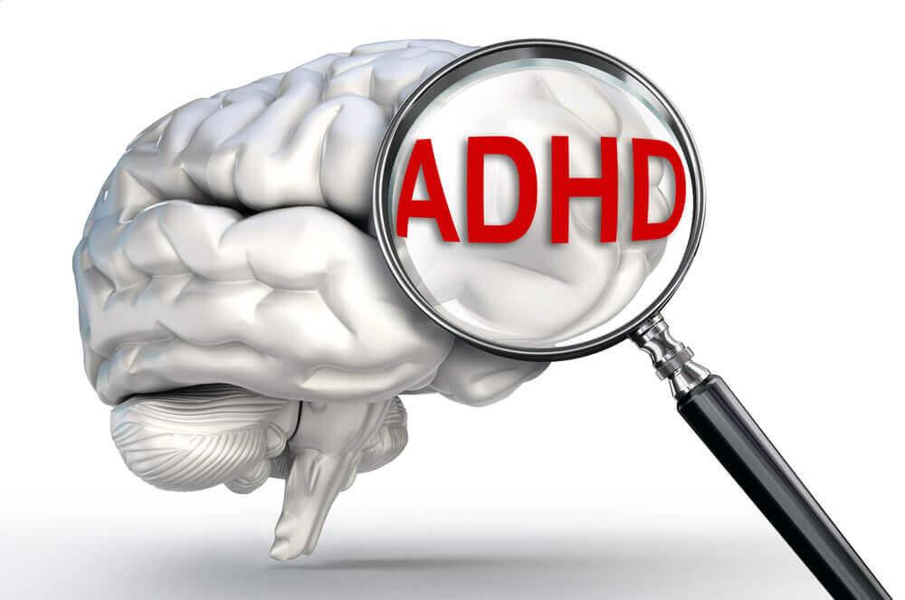 ADHDの脳の仕組みが明らかに!健常者と何が違う?