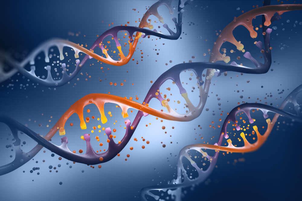 発達障害の遺伝は低確率